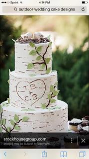 Birch Tree Bark Wedding Cake In Buttercream? - CakeCentral.com