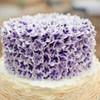 bgill Cake Central Cake Decorator Profile