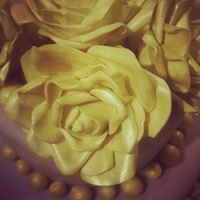 Lotita Cake Central Cake Decorator Profile