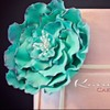 Kaiulani Cake Central Cake Decorator Profile