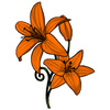 The Orange Lily Cake Central Cake Decorator Profile