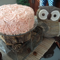 bbibeau Cake Central Cake Decorator Profile