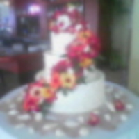 FrostinGal Cake Central Cake Decorator Profile