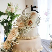 Etheldenisse Cake Central Cake Decorator Profile