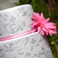 xinue Cake Central Cake Decorator Profile