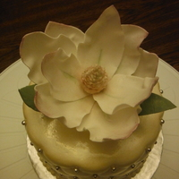 BRATTYR  Cake Central Cake Decorator Profile