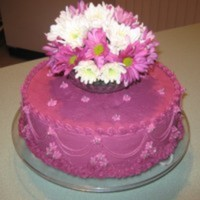 countrygirlz Cake Central Cake Decorator Profile