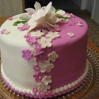 funtodecorate2 Cake Central Cake Decorator Profile