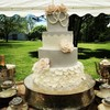 Tracyj Cake Central Cake Decorator Profile