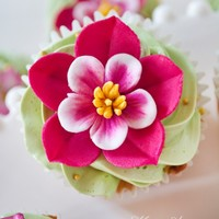 vaganovaalina Cake Central Cake Decorator Profile