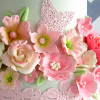 daan69 Cake Central Cake Decorator Profile