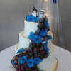 Maleena Cake Central Cake Decorator Profile