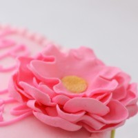 phennig Cake Central Cake Decorator Profile
