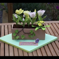 rjeffery Cake Central Cake Decorator Profile