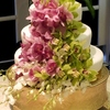 Yolys cakes Cake Central Cake Decorator Profile