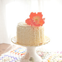 Cake Decorator EndlessSummer