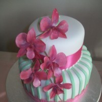 Cake Decorator Chellescakes