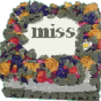 missjane Cake Central Cake Decorator Profile