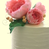 PriyaMaclure Cake Central Cake Decorator Profile