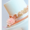 prettygem Cake Central Cake Decorator Profile