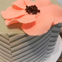 Cake Decorator nicpara