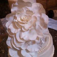 Cake Decorator Lisa Meadows