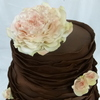 Cupcakesplus Cake Central Cake Decorator Profile