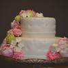 tomcatsgirl Cake Central Cake Decorator Profile
