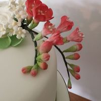 Molly69 Cake Central Cake Decorator Profile