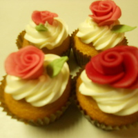 georginatrevi Cake Central Cake Decorator Profile