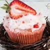 cakespender Cake Central Cake Decorator Profile