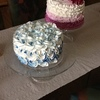 Nonni53 Cake Central Cake Decorator Profile