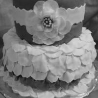 rachelcak3s Cake Central Cake Decorator Profile