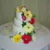 alise Cake Central Cake Decorator Profile