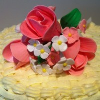 Shaza25  Cake Central Cake Decorator Profile