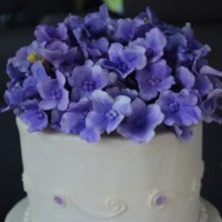 Debmar Cake Central Cake Decorator Profile
