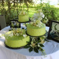 Cake Decorator Mymlb