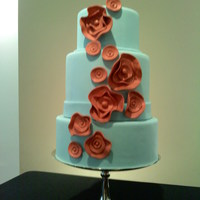 ciescanoodle Cake Central Cake Decorator Profile
