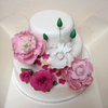 AmyKY Cake Central Cake Decorator Profile