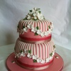 dragonflycakes Cake Central Cake Decorator Profile