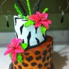 stewy Cake Central Cake Decorator Profile