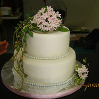 ysa  Cake Central Cake Decorator Profile