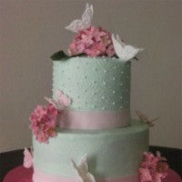 Cake Decorator yolina