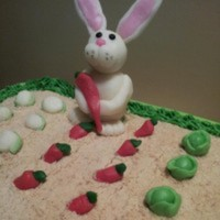 SheliaRenee Cake Central Cake Decorator Profile