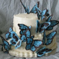 ANDaniels Cake Central Cake Decorator Profile