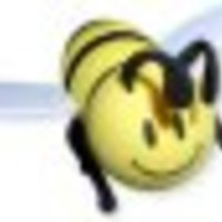 Cake Decorator  piramirez