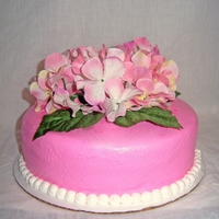 teresadutton Cake Central Cake Decorator Profile