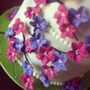 mattyeatscakes Cake Central Cake Decorator Profile