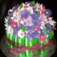 edwina142 Cake Central Cake Decorator Profile