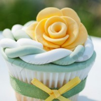 Cupcations Cake Central Cake Decorator Profile